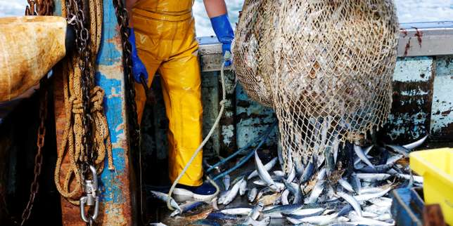 France to help Sri Lankan fisheries sector